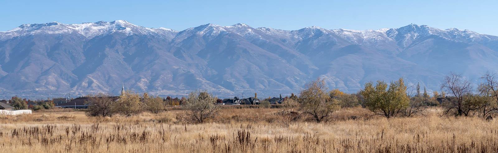 Rural Countryside in West Davis